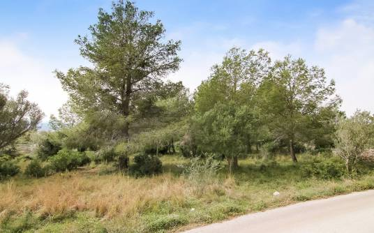 Building plot - Venta - Javea - Valls